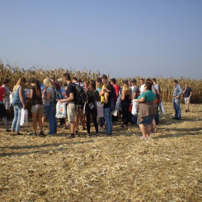Maisfest KWS Senice na Hané