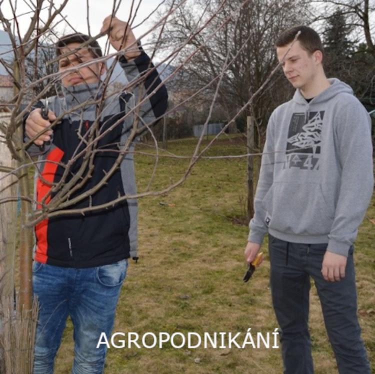 Agropodnikání