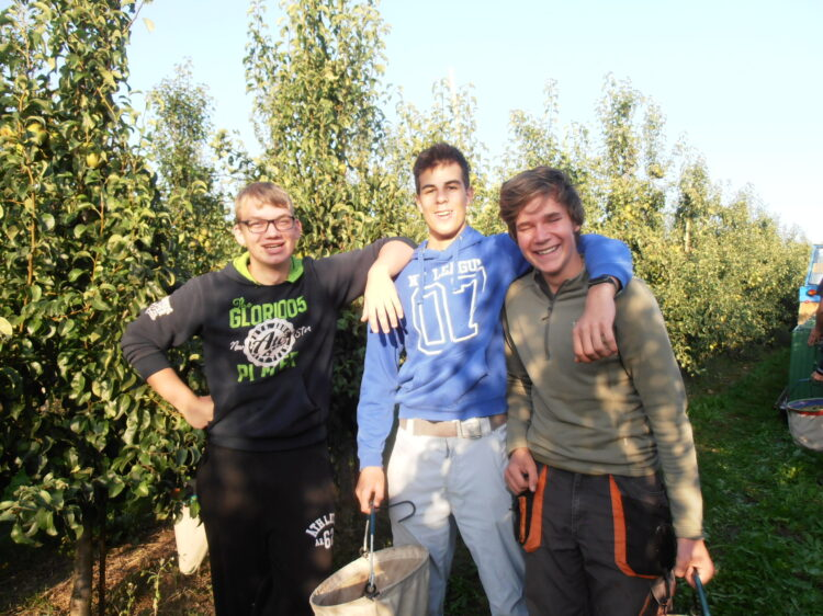 Odborná praxe – Středisko sadů v Libině